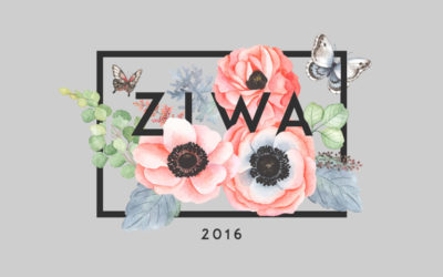Viajes Kinsai, ganador del Premio Ziwa 2016