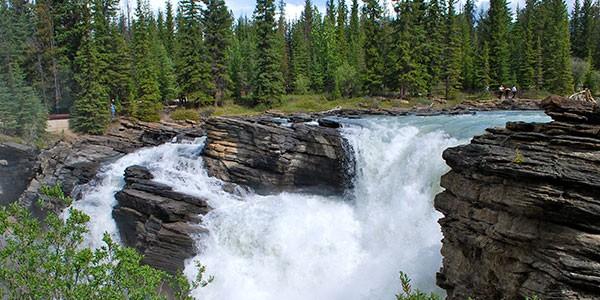 Rio Athabasca en Jasper, Canadá