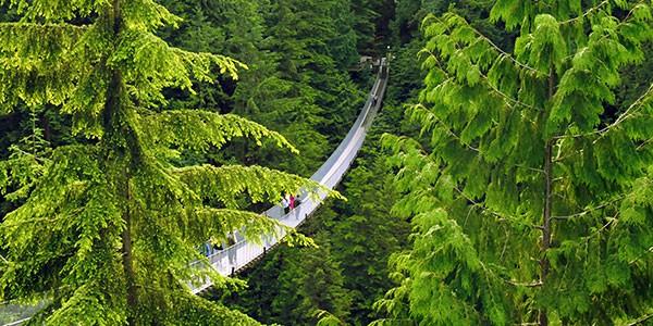 Capilano Suspension Bridge en Vancouver