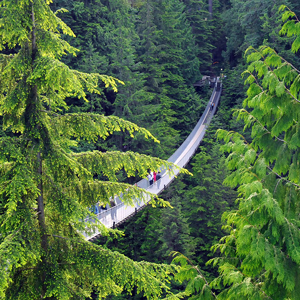 Capilano Suspension Bridge en Vancouver, oeste canadiense