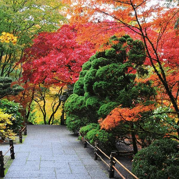 Butchard Gardens en Victoria, oeste canadiense