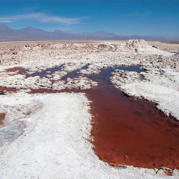 15 días en el Salar de Atacama en Chile