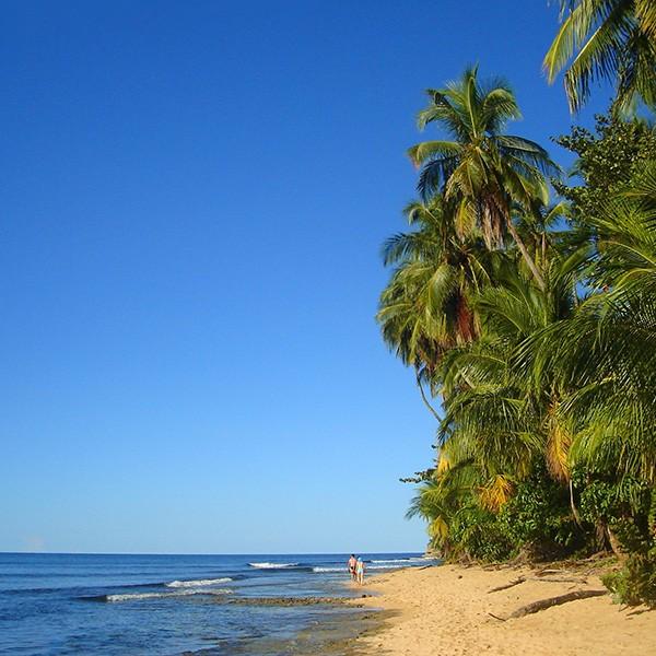 Parque Nacional Cahuita, Puerto Viejo, última parada del Fly and Drive Costa Rica
