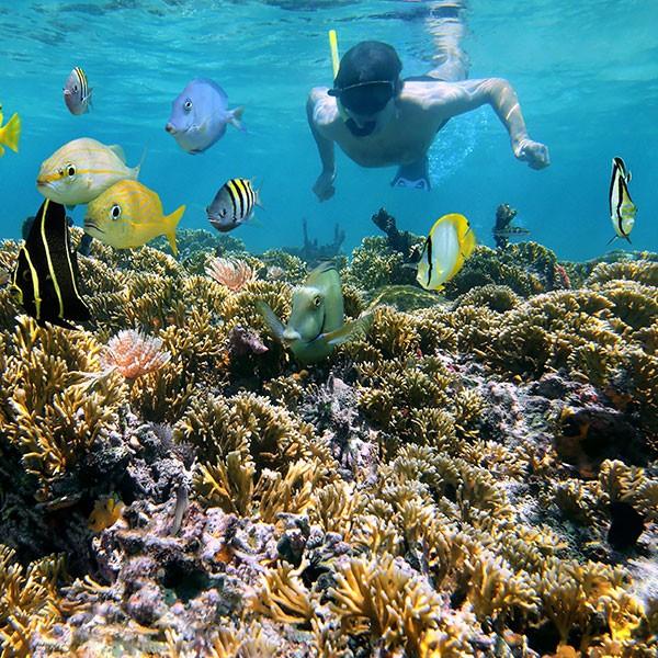 Snorkel en Costa Rica