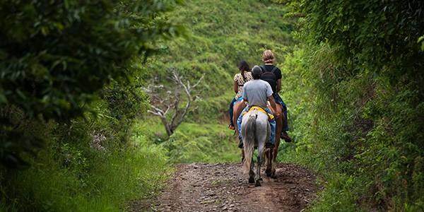 Paseo a caballo por la selva en Turrialba, Costa Rica