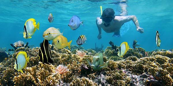 Snorkel en el viaje de luna de miel a México