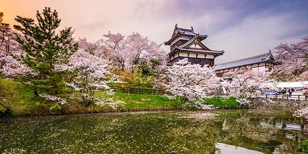 Excursión al Castillo Koriyana, Nara, en el viaje con recorrido por el Camino Kumano