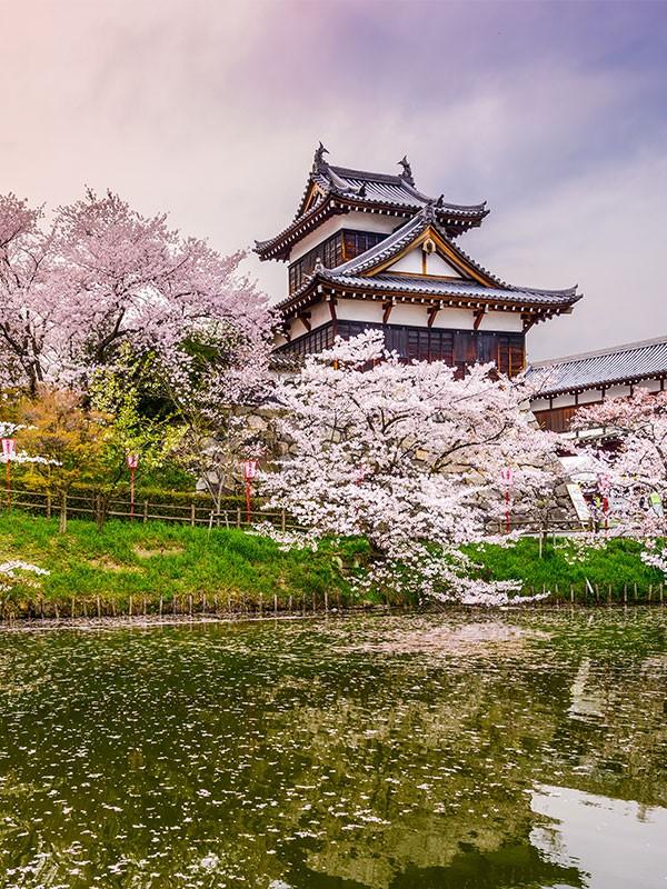 Nara, primera capital de Japón