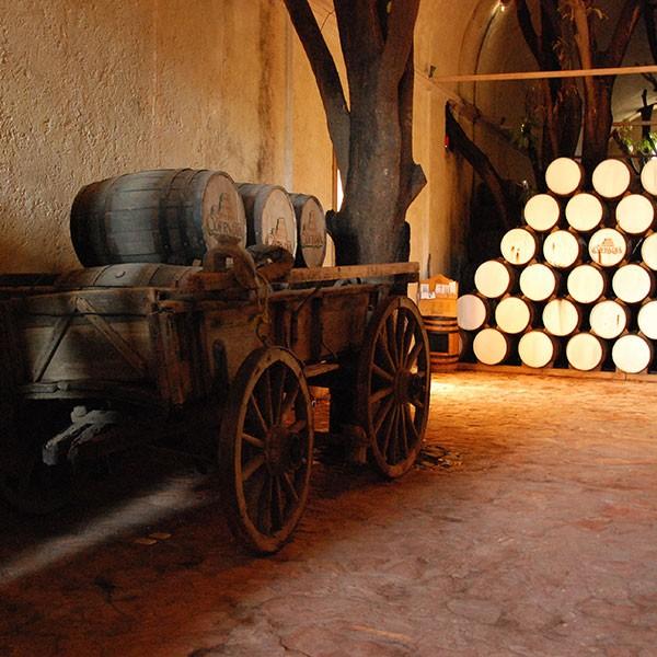 Destilería en la ciudad de Tequila, México