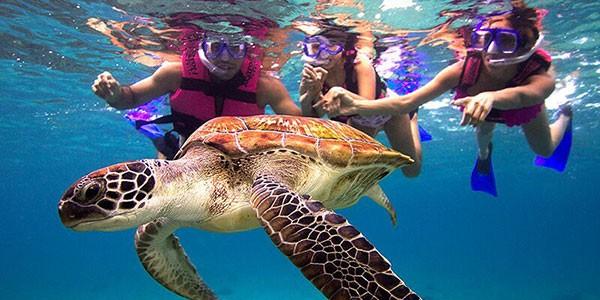 Snorkel con niños, actividad del parque Xcaret en México
