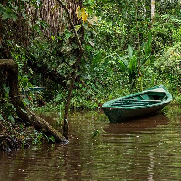 Amazonas peruano, Lago Sandoval en la Reserva Nacional de Tambopata en Perú
