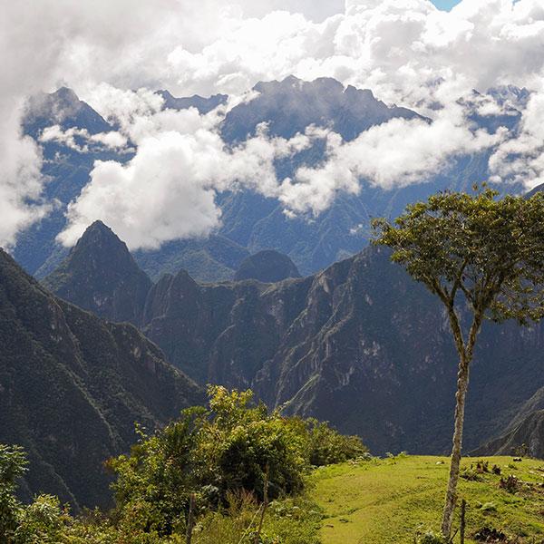 Trekking Salkantay dia 4, Machu Picchu desde Llactapata
