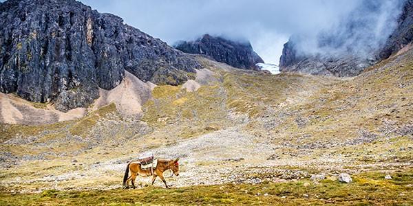 Aventura en Perú con ruta a caballo por el Valle Sagrado