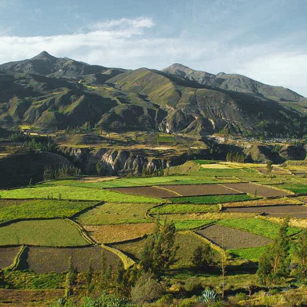 Valle del Colca en la luna de miel en Perú