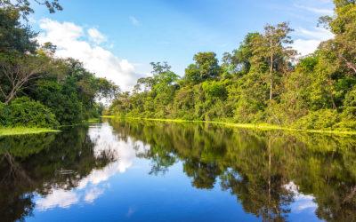 Crucero por el Amazonas: Perú de lujo