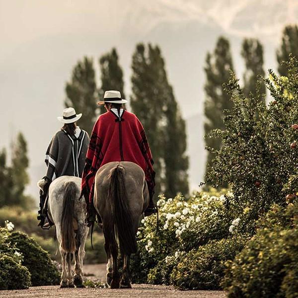 Visita a bodegas en Mendoza La Pampa argentina