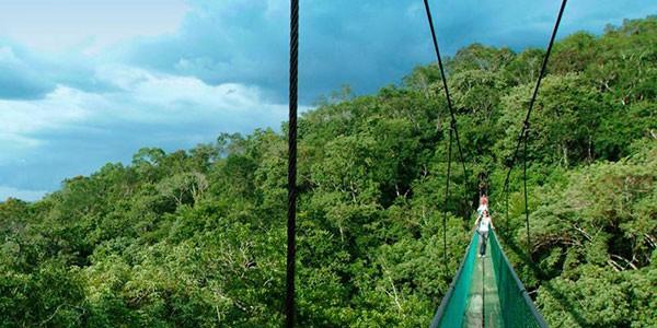 Puentes colgantes de Ixpanpajul, actividad opcional en Guatemala al completo