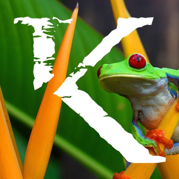 Viajes de ecoturismo a Costa Rica KINSAI
