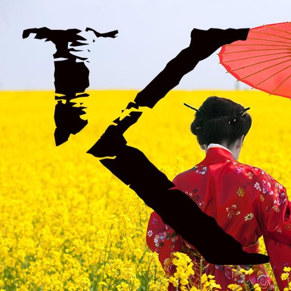 Viajes a China y  Japón a medida KINSAI