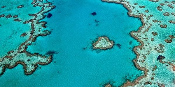 Cairns Gran Barrera de Coral