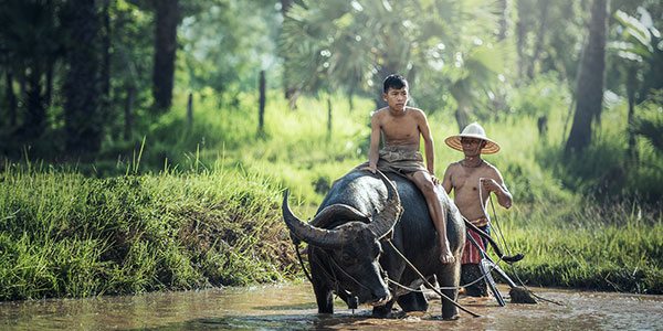 Ratanakiri en Camboya