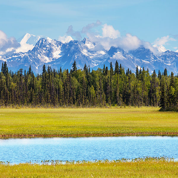 Parque Nacional Denali en Alaska