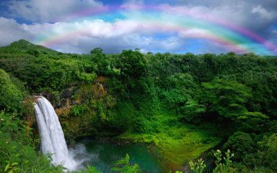 Costa oeste y Hawái