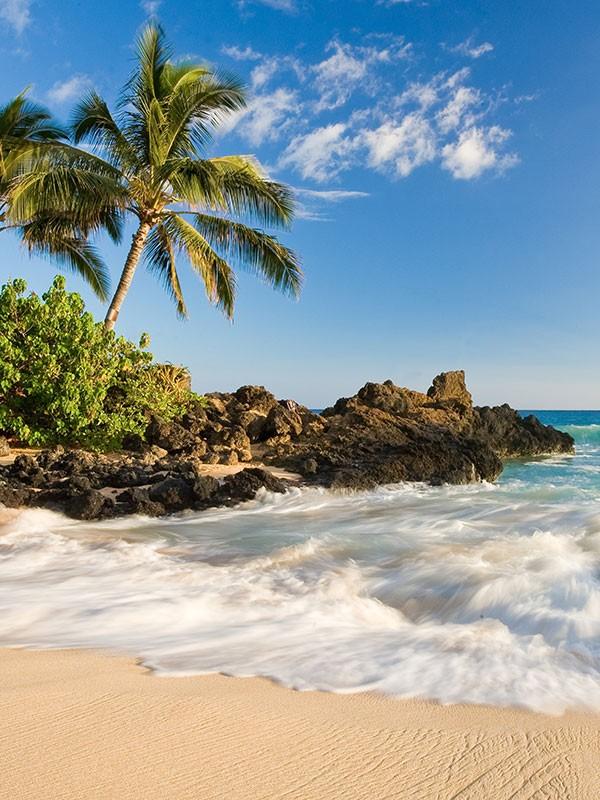 Viajes a Estados Unidos y Hawái