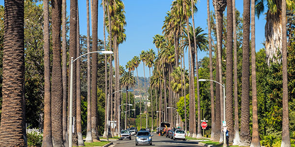 Beberly Hills, Los Ángeles