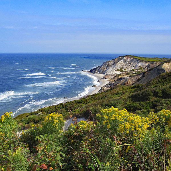 Costa de Martha's Vineyard