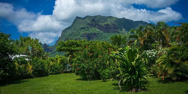 Viaje de luna de miel a Isla de Moorea en la Polinesia francesa