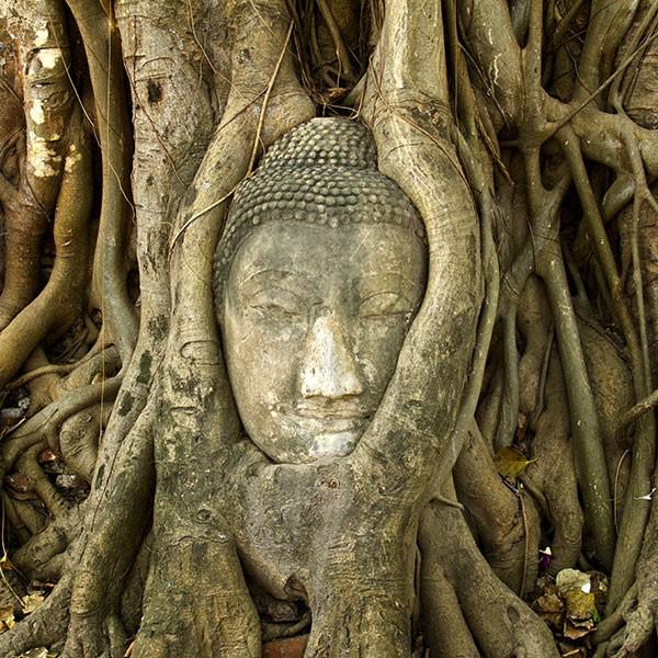 Ayutthaya y el buda