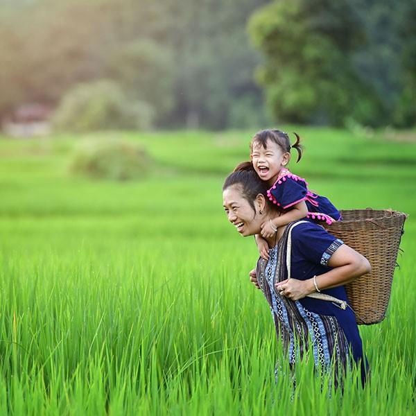 Tierras Altas de Vietnam
