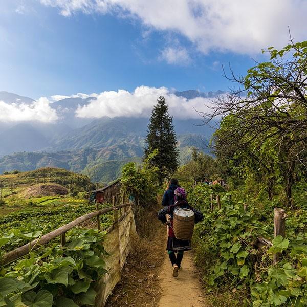 Trekking por el valle Muong Hoa en Sapa