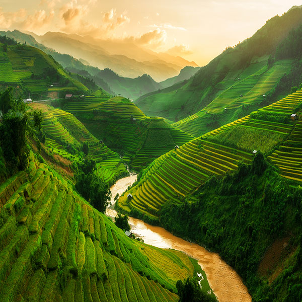 Terrazas de arroz Sapa, Vietnam