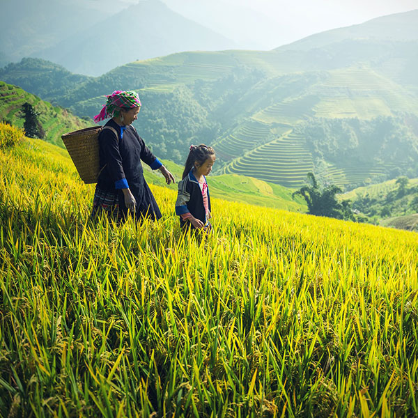 Sapa, Tierras altas de Vietnam