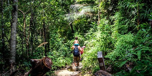 Senderismo en la jungla de Siem Reap
