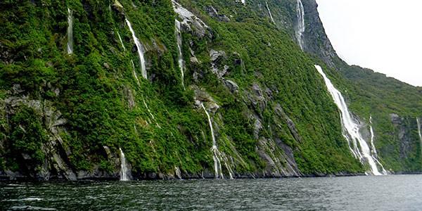 Crucero Milford Sound