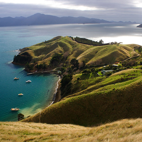 Fly and drive Nueva Zelanda, isla sur Marlborough Sounds