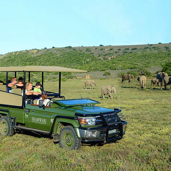 Safari con niños en Riverdene Lodge de Familia