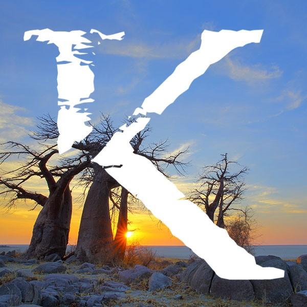 Viajes safari en Botsuana KINSAI