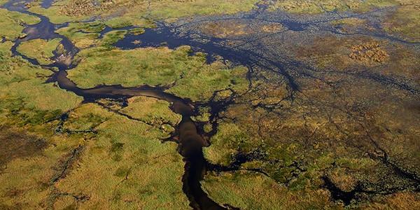 Sobrevuelo en avioneta del delta del Okavango