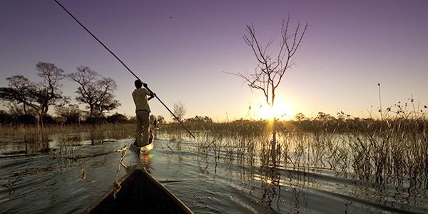 Safari en mokoro en Botsuana