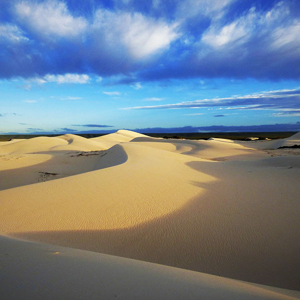 Reserva natural De Hoop en Sudáfrica