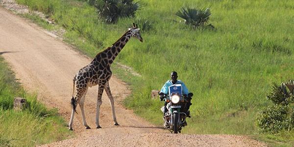 Carretera en Uganda