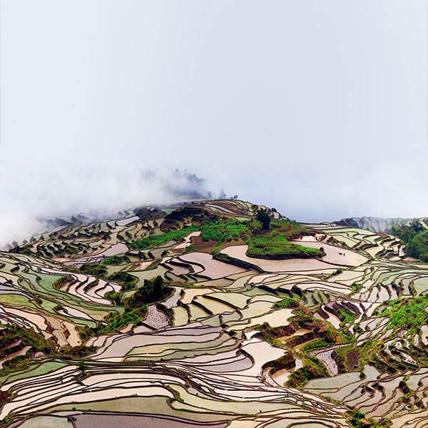 Terrazas de arroz en Yunnan, China
