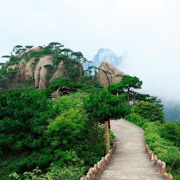 Monte Sanqingshan en el viaje al sureste de China