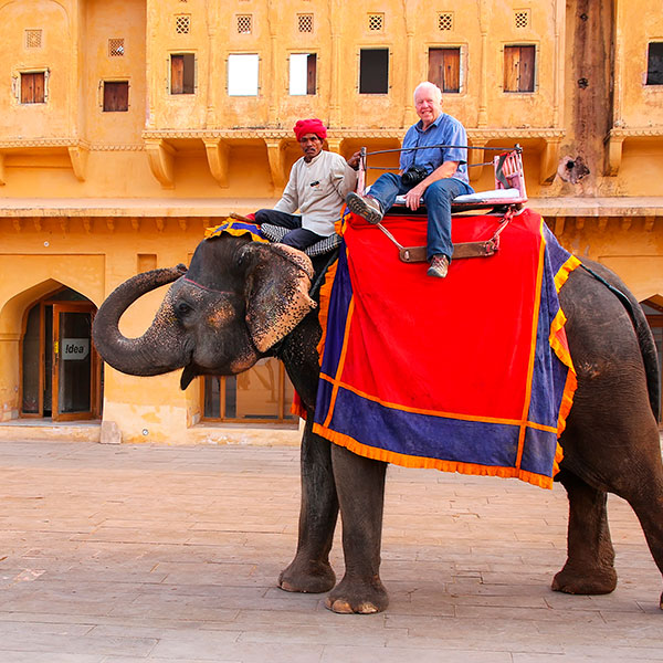 Elefante en el Fuerte Amber, Jaipur