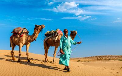 Rajasthan y el norte de la India