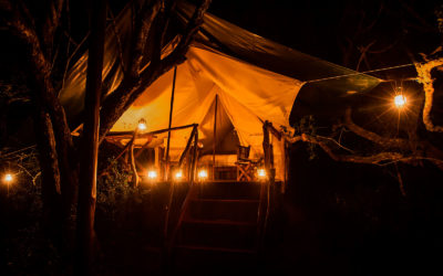 Safari en Tanzania: glamping